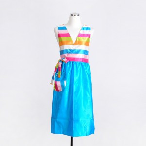 Multicolored Apron (for Adult)